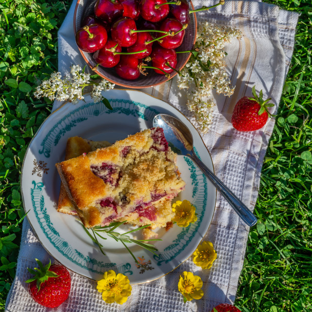 """Top view on portion of cherry cake with ripe strawberries around and yellow blooms"" stock image"
