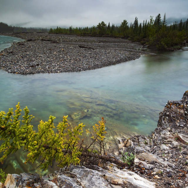 """""""Elbow River"""" stock image"""