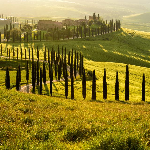 """The beauty of the Val d'Orcia in Tuscany , Italy."" stock image"