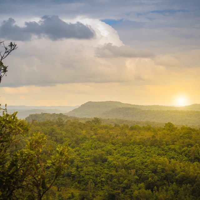 """""""Peaceful landscape of green forest and sunrise or sunset over mountains in..."""" stock image"""