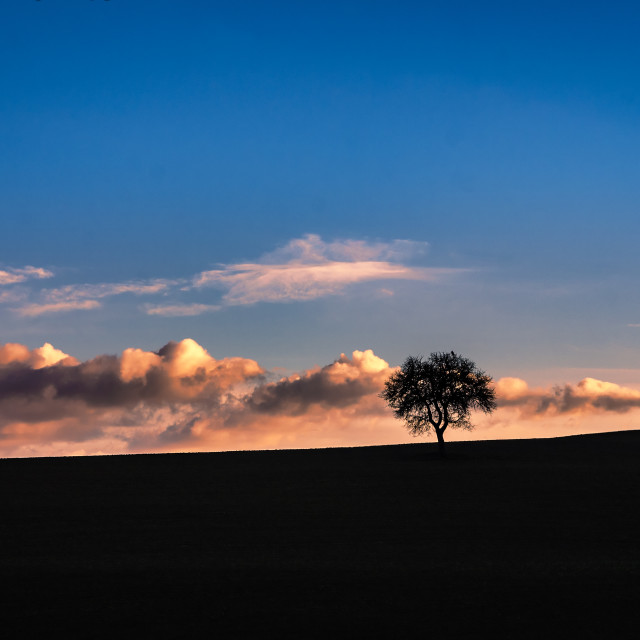 """""""Val d' Orcia sunset"""" stock image"""
