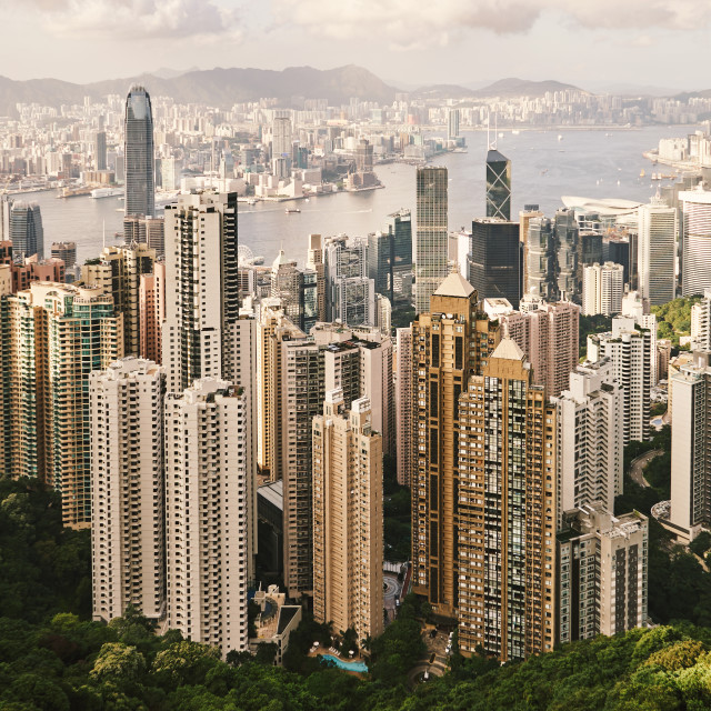 """""""HONG KONG - Jul 26, 2015: The skescrapers view from the Victoria"""" stock image"""