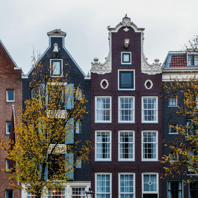 """""""Dutch Houses Facade In Downtown Amsterdam City"""" stock image"""
