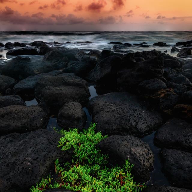 """""""Kauai Hawaii Sunset at the Beach"""" stock image"""