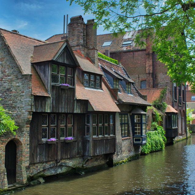 """A leafy canal in Brugge"" stock image"