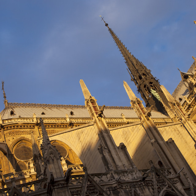 """Sunrise against the gothic architecture of Cathedral Notre Dame, Paris France"" stock image"