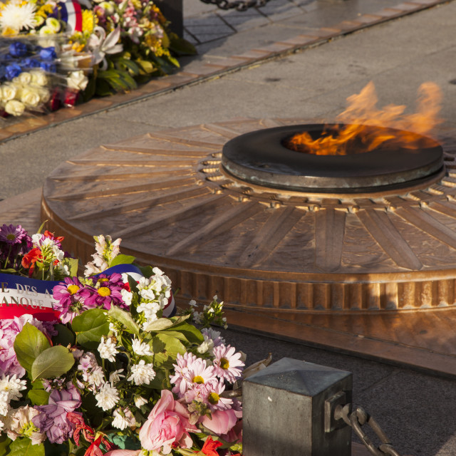 """""""Tomb of the Unknown Soldier beneath the Arc de Triomphe, Paris France"""" stock image"""