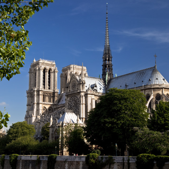 """Cathedral Notre Dame, Paris France"" stock image"