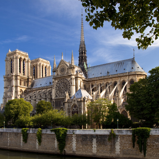 """Cathedral Notre Dame on the banks of River Seine, Paris France"" stock image"