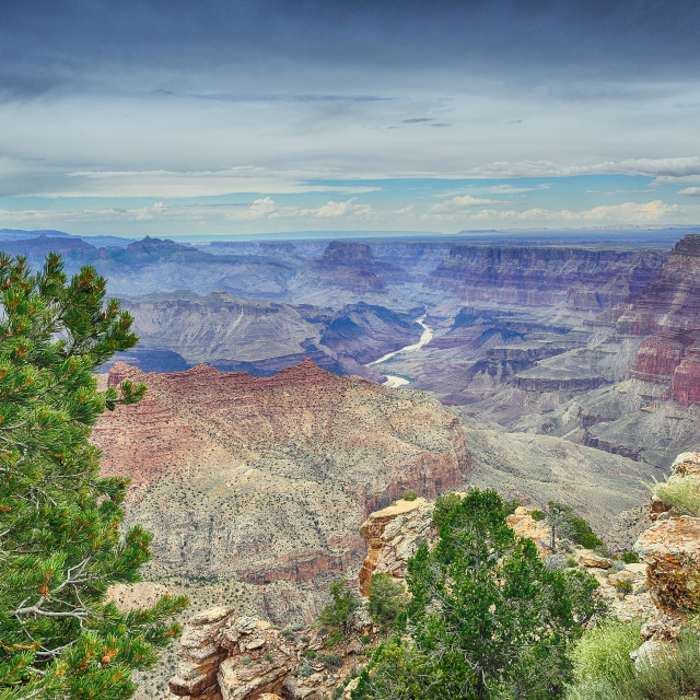"""South Rim Grand Canyon, Arizona, US."" stock image"