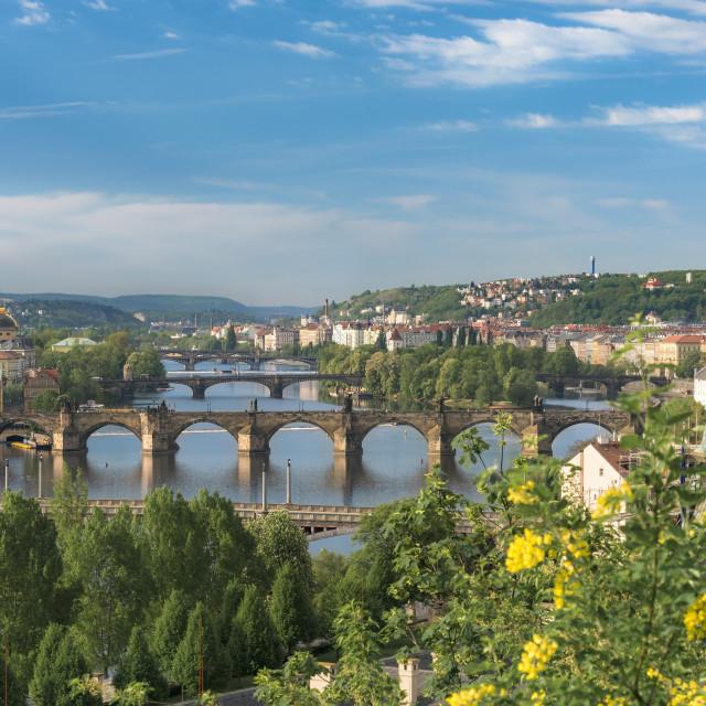 """Vltava river with great bridges in Prague"" stock image"