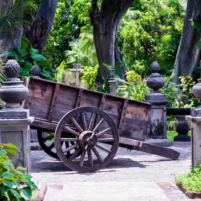 """""""Wooden Wagon at Casa Sauza"""" stock image"""