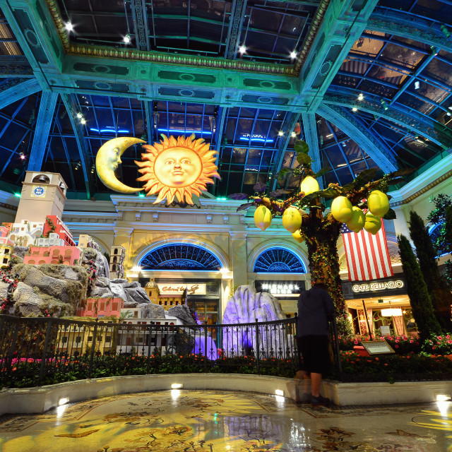 """Bellagio hotel and casino in Las Vegas, Usa."" stock image"