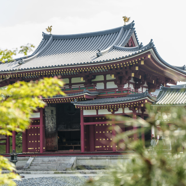 """""""Byodoin Temple"""" stock image"""