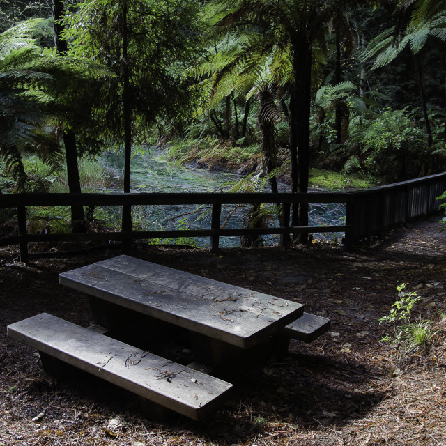 """""""Picnic Table"""" stock image"""