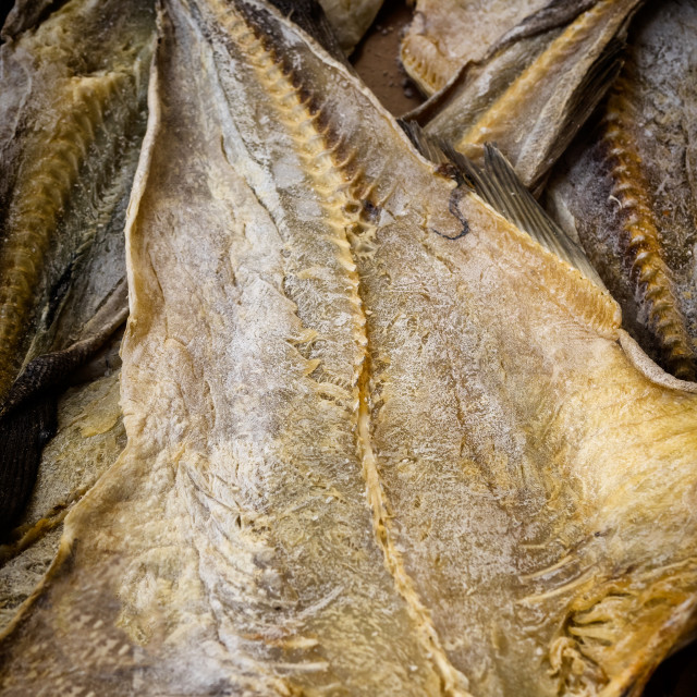 """Codfish uncooked on a marketplace in Orvieto Umbria,"" stock image"