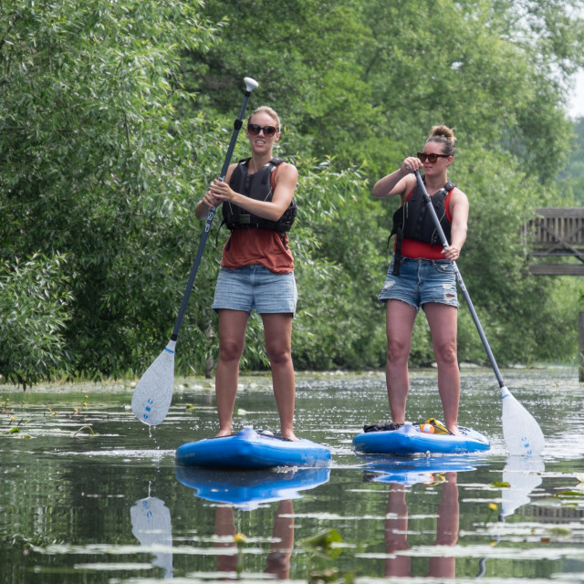 """Standup paddleboarders"" stock image"