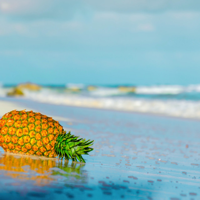 """Pineapple on the beach reflected in the water"" stock image"