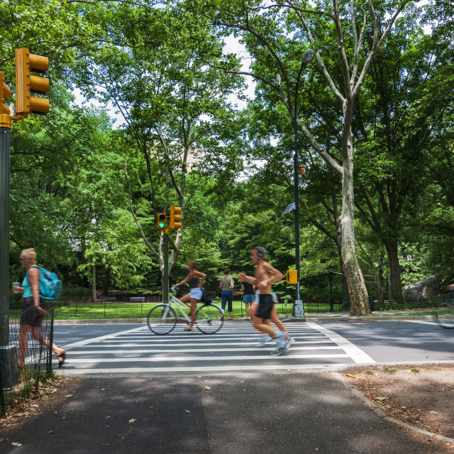 """People jogging and cycling at the Central Park in New York City, USA; Concept for healthy lifestyle"" stock image"