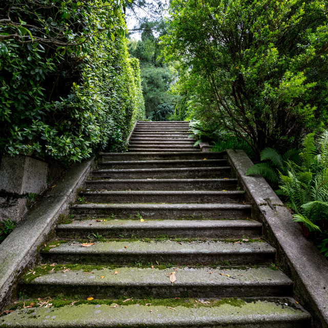"""""""Old shady stone staircase at Isola Bella island"""" stock image"""