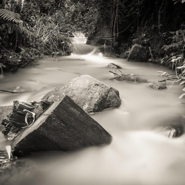 """River"" stock image"