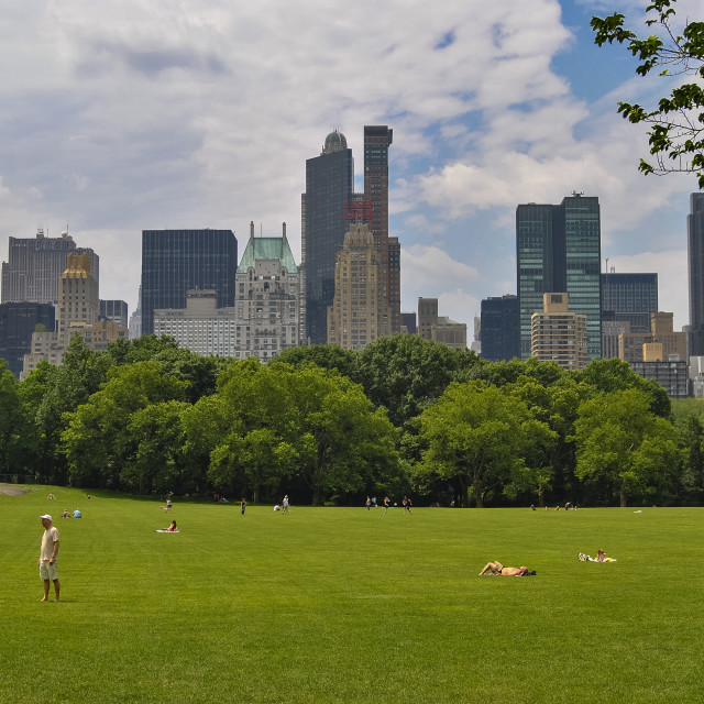 """New York City, USA - June 6, 2010: People relaxing at the Central Park with the New York skyline in the background, in the city of New York, USA."" stock image"