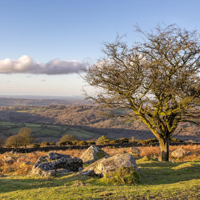 """Dartmoor national Park"" stock image"