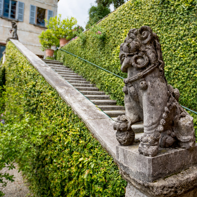 """Staircase with lion statue decoration, Isola Bella"" stock image"