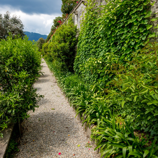"""Beautiful peaceful alley at Isola Bella, Italy"" stock image"