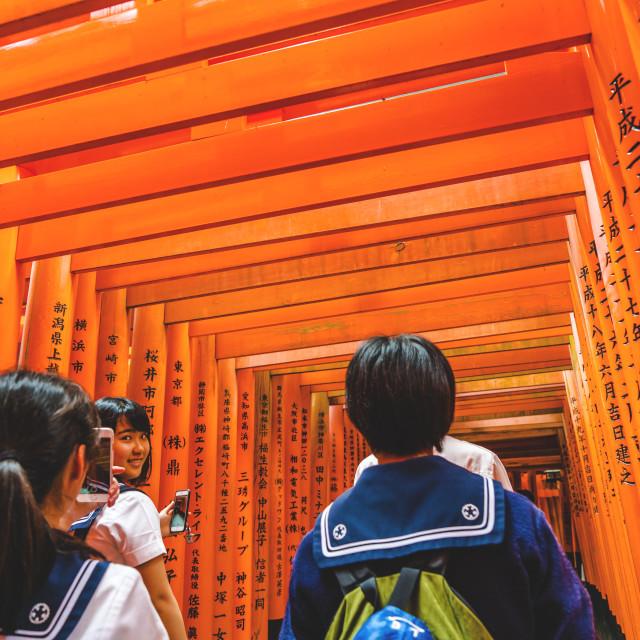 """""""Group Trip Fushimi"""" stock image"""