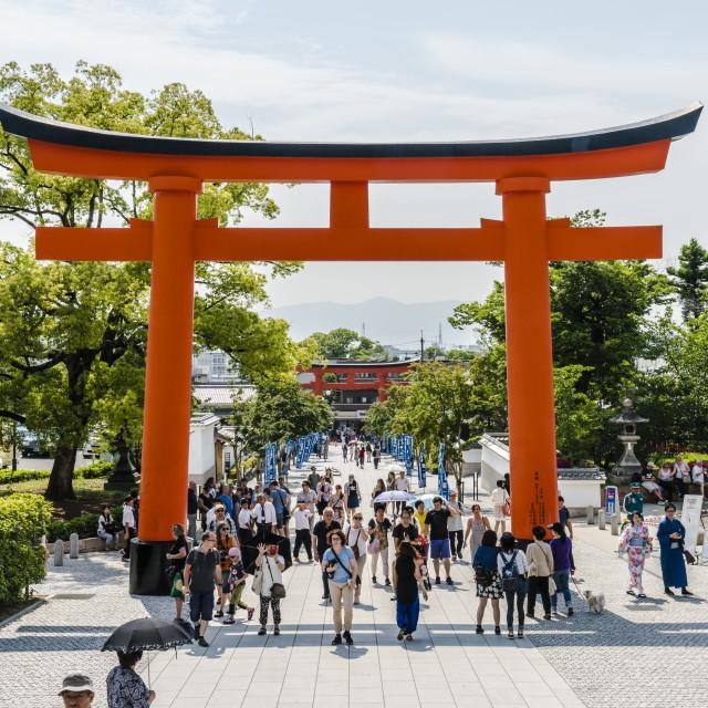 """""""Fushimi Torii Gate"""" stock image"""