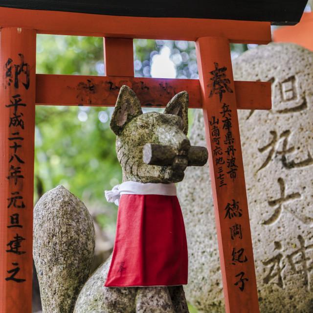 """""""Kitsune"""" stock image"""