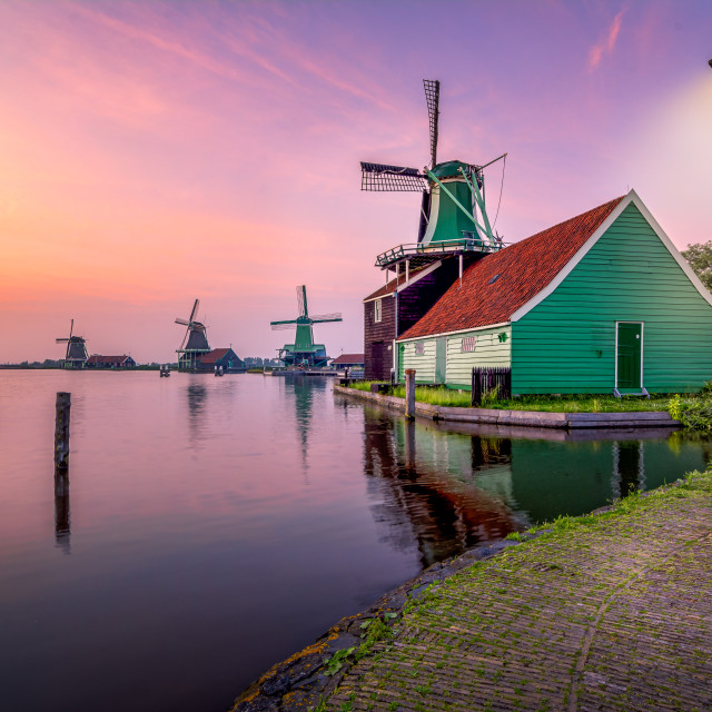 """Mustard Mill at the Zaanse Schans"" stock image"