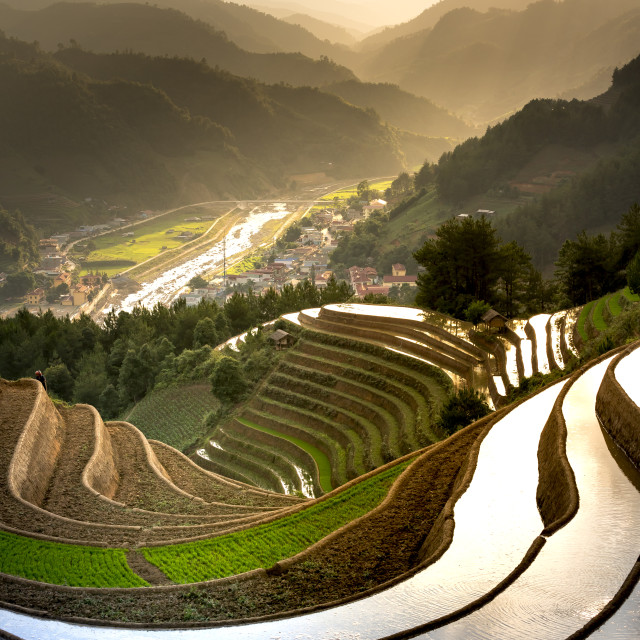 """Beautiful scenery the curves of terraces field with sunlight reflected in the season watering season in Mu Cang Chai in Yen Bai Province, Vietnam."" stock image"