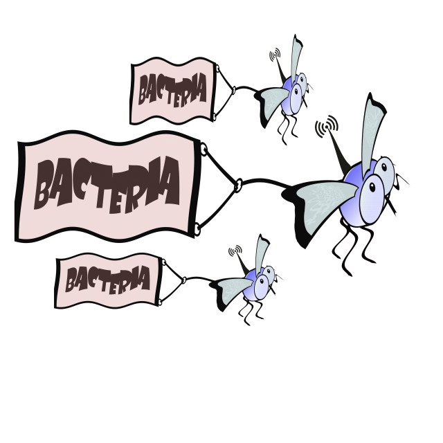 """""""Flies with radio senders carrying bacteria from one place to another - concept bacterial warfare."""" stock image"""