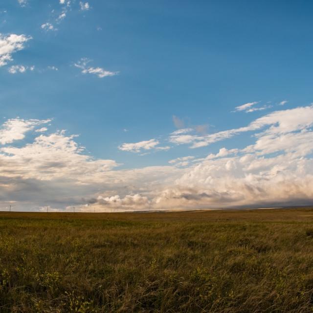 """Colorado plains"" stock image"