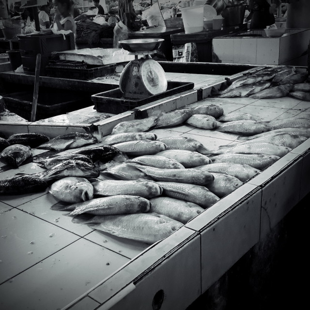 """""""The fish stall"""" stock image"""