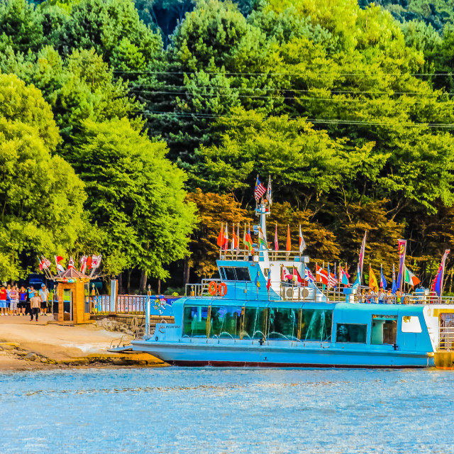"""""""Nami Island's Pier in the Green Forest"""" stock image"""