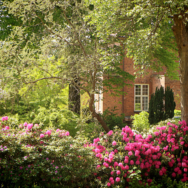 """House and garden, beautiful garden in spring"" stock image"