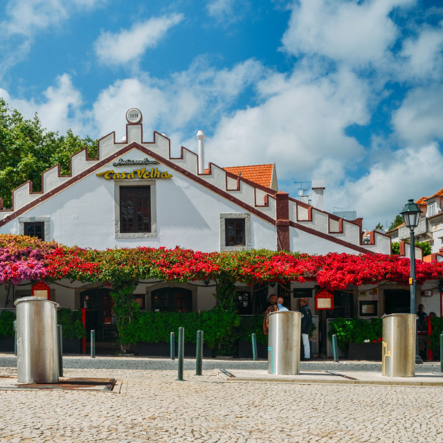 """Casa velha restaurant covered in ornamental Bougainvillea plants"" stock image"