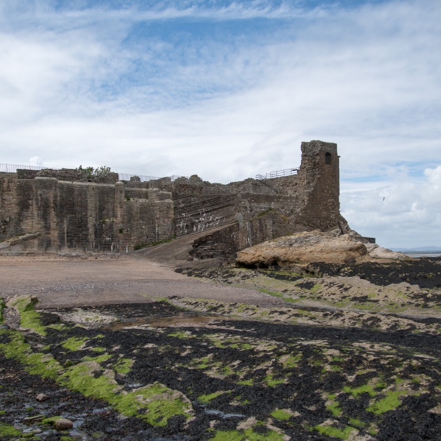 """St. Andrews Castle"" stock image"