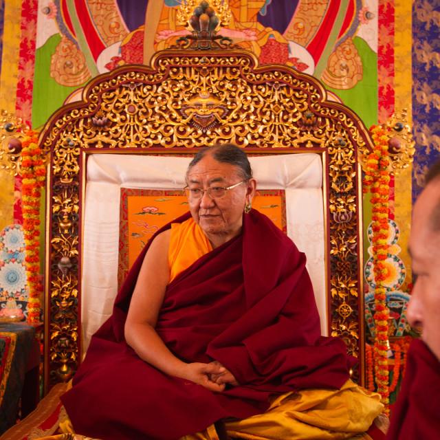 """His Holiness Sakya Trizin Rinpoche, the Great Sakya Monlam prayer meeting at..."" stock image"