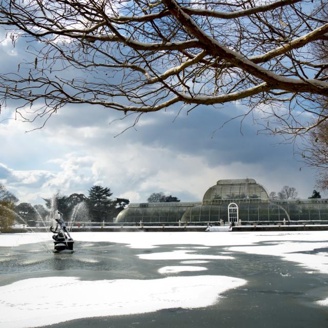 """Kew Gardens winter Palm House"" stock image"