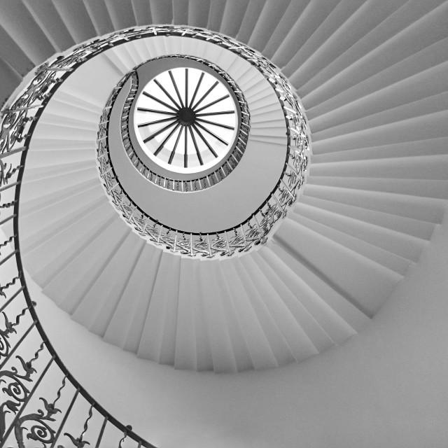 """Tulip Spiral Stair Case"" stock image"