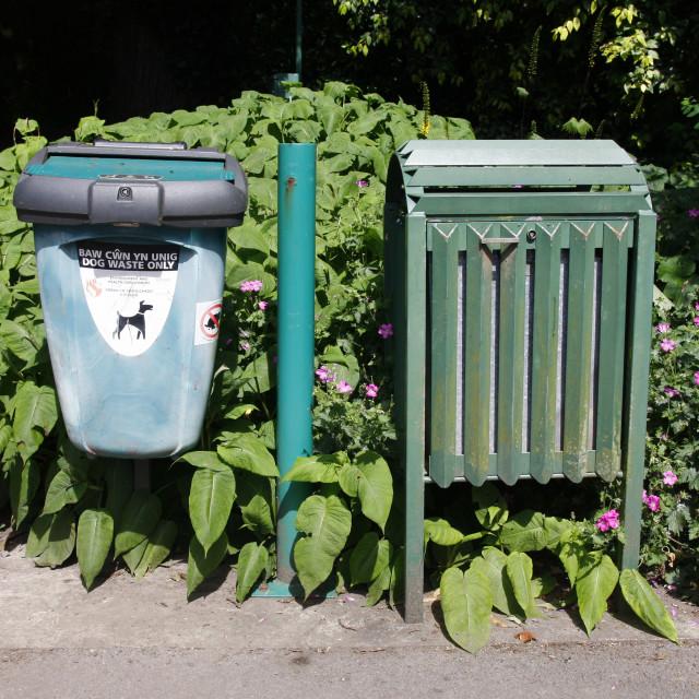 """""""Dog waste bin and rubbish bin"""" stock image"""