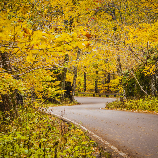 """""""Curvy road in autumn near Smugglers Notch, Stowe, Vermont USA"""" stock image"""
