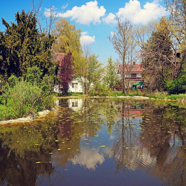 """""""Pond in rural Bavaria"""" stock image"""