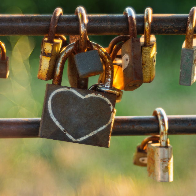 """""""Padlock on a wire garden fence"""" stock image"""