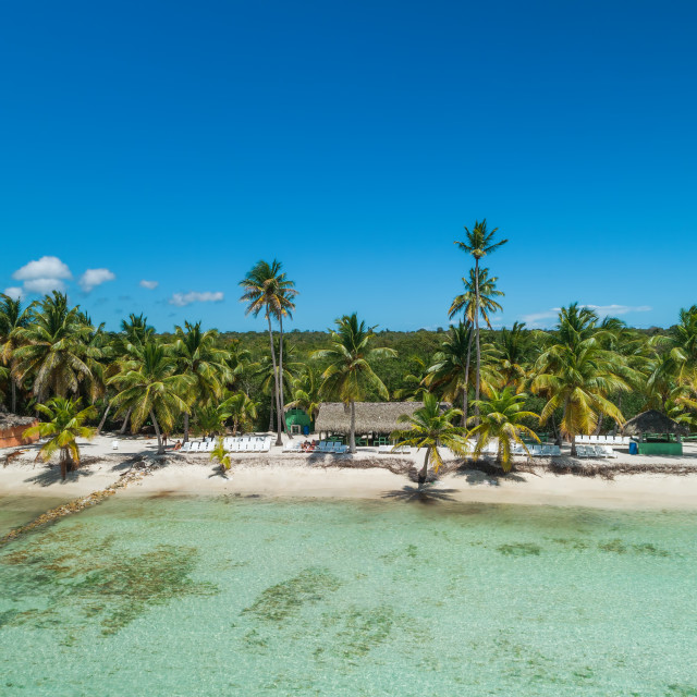 """""""Aerial view of tropical beach, Dominican Republic"""" stock image"""