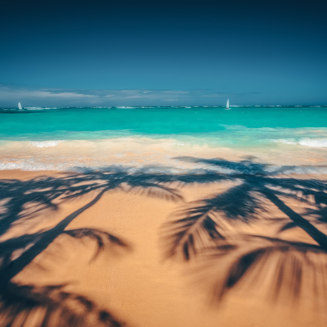 """""""Palm trees shadow on the tropical beach Punta Cana, Dominican Re"""" stock image"""